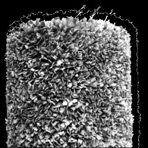 Luxe karpetten 200 x 300